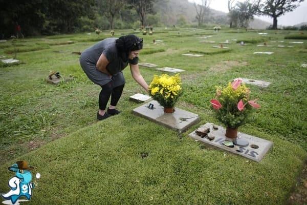 ¿Cómo Elegir el Cementerio más Idóneo en España?